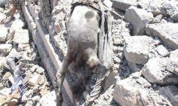 تحقيق  يكشف دموية غارات السعودية والإمارات باليمن