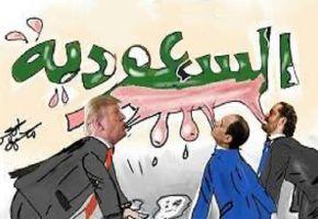 مملكة الحليب السعودية