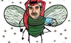 احتفالات الذباب والبعوض السعودي بتبرئة القحطاني